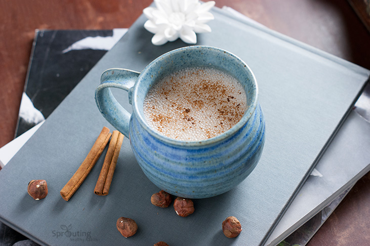 Dreamy Hazelnut Hot Chocolate-No Sugar & Vegan