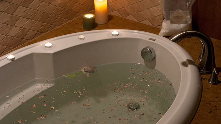 Soothing Herbal Baths-Guide to preparing and amazing recipes for mind and body